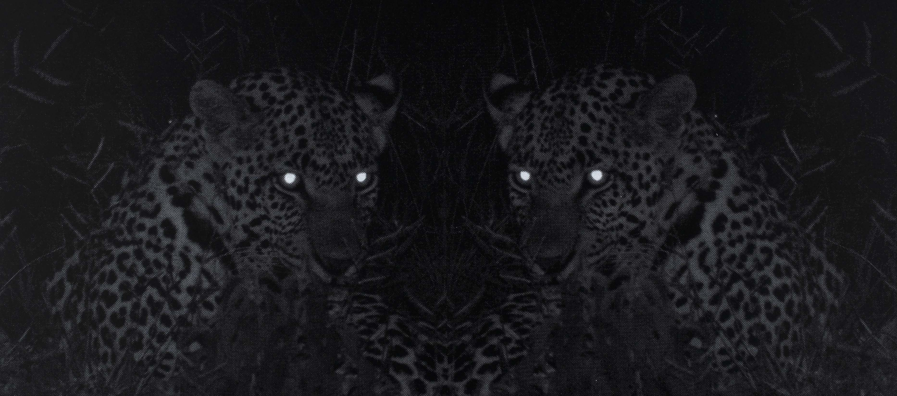 Eve-Biddle-Artworks-Big-Cats-Leopard-Africa-2018