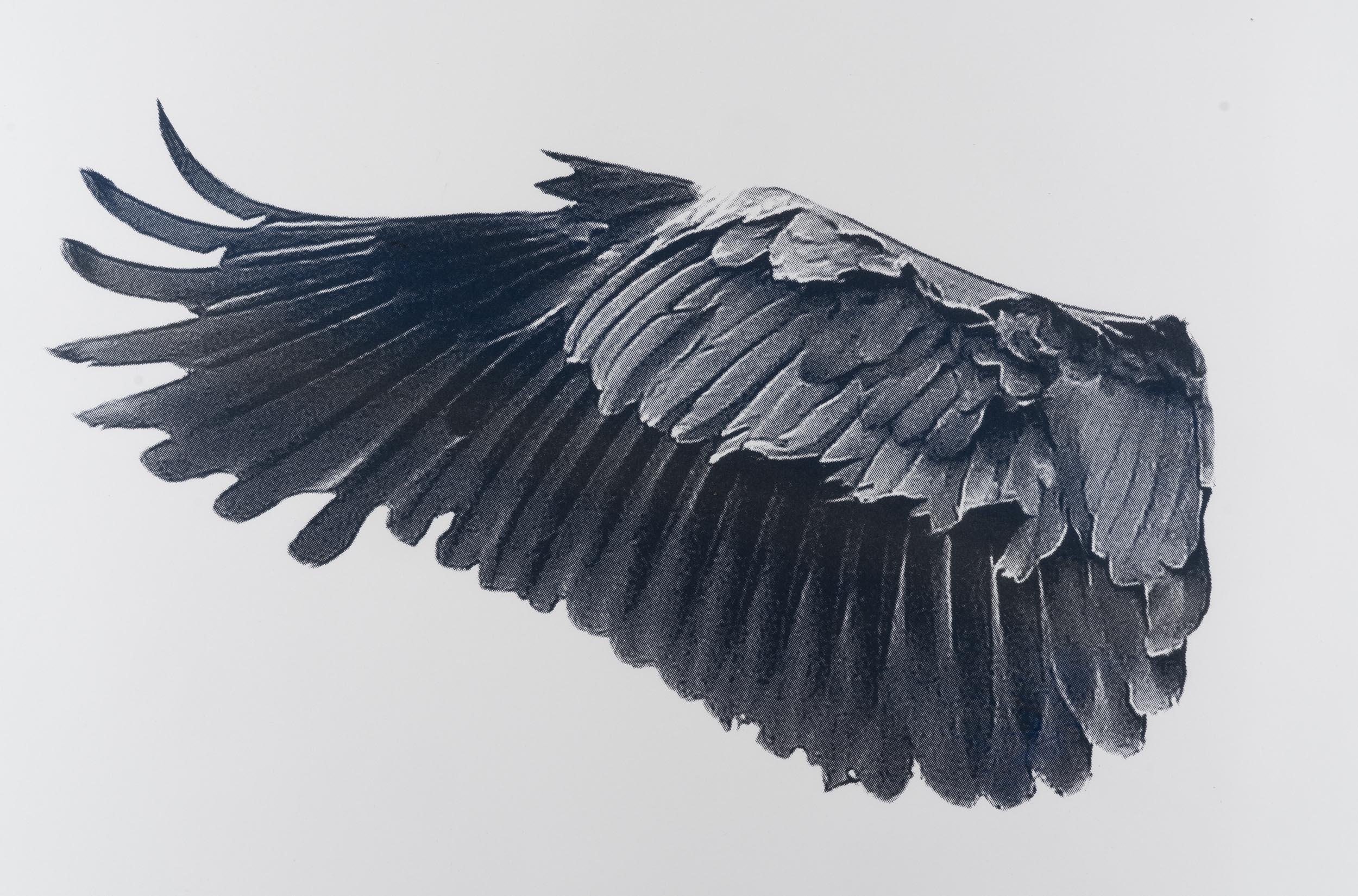 Eve-Biddle-Artworks-Dutchess-Heron-Wing-gunmetal-2016-02