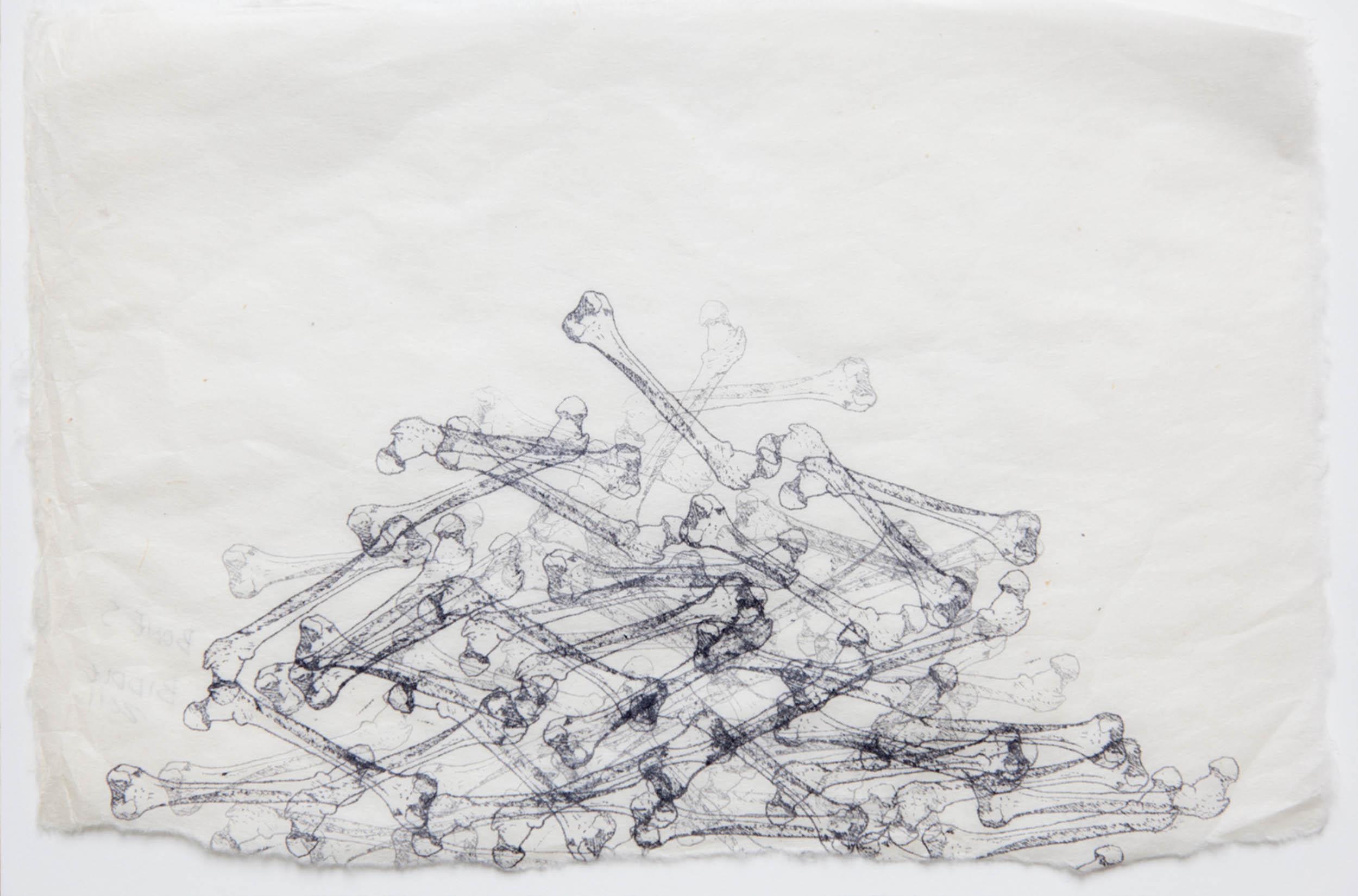 Eve-Biddle-Artworks-Catacombs-Bone-Pile-2013-2