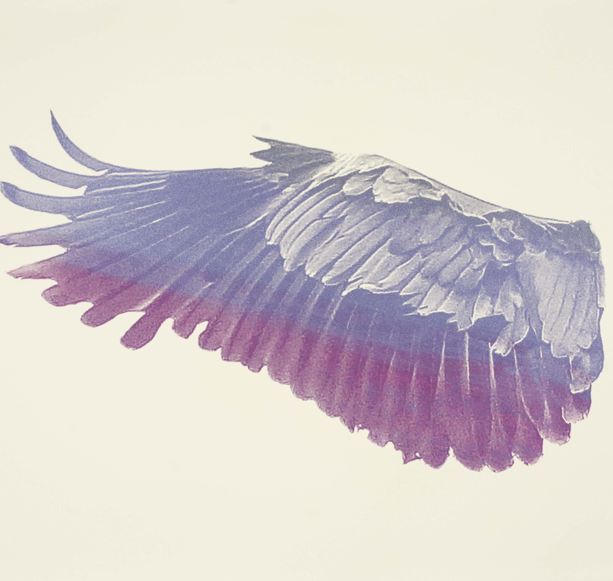Silkscreen of a single heron's wing in purple and pink shades.